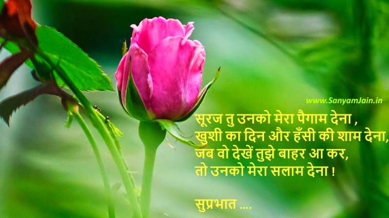 ... in Hindi On Picture – Subh Prabhat Messages Wallpaper, Wishes Image