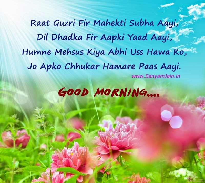 Good Morning Wallpaper With Love Sayari : Good Morning Shayari In Hindi On Beautiful Flowers And Sunrise Picture