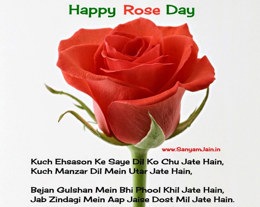 Very Beautiful Rose Day Shayari Picture - Happy Rose Day Shayari Wallpapers